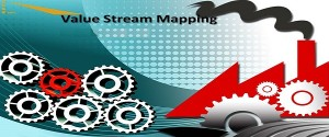 Value Stream Mapping with Natural Processes