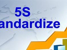 5S Standardize